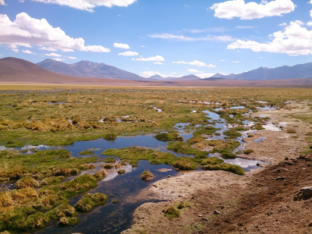 Atacama woestijn in Chili