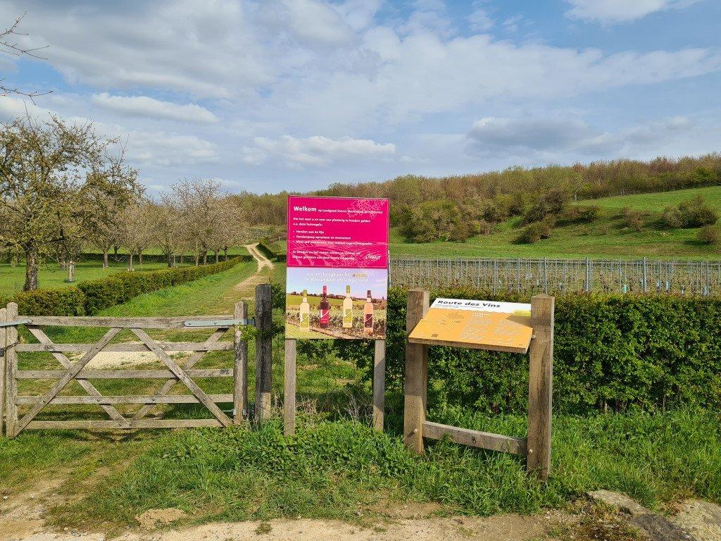 Wijnwandeling Limburg: Landgoed Overst